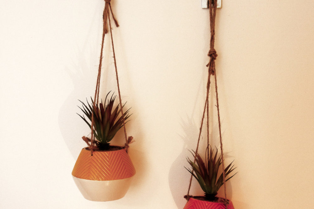 APT 4 Duckworth hanging plants