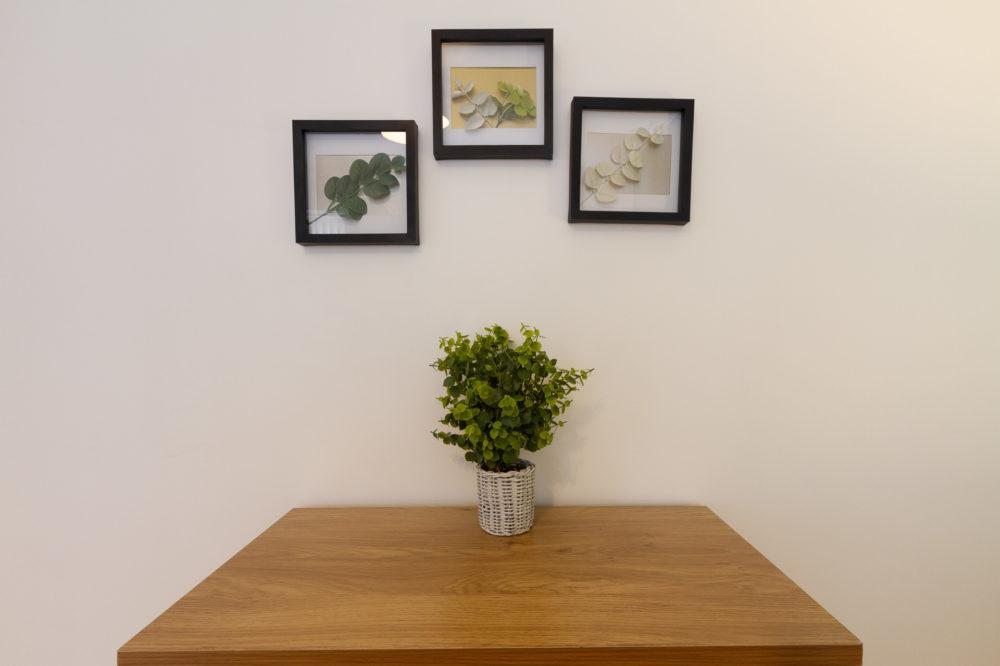 Apt 7 Duckworth bedroom plant pictures